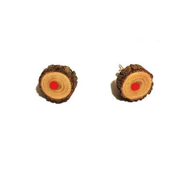 Natural wood pencil earrings, studded earrings, wood sticks, twigs, handmade earrings, silver plated studs, red pencil