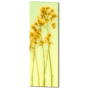 Yellow Flower Canvas - Artistic Blur - Yellow Green - Home Decor - Tall Canvas - Floral Stems - Fine Art - Large Canvas - 20 x 60 Canvas