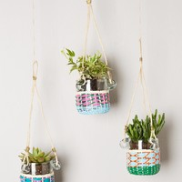 Lupine Hanging Planter