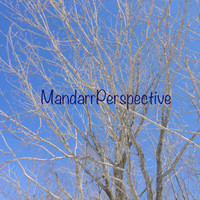 Tree Branches on a Sunny Day, Digital Photography Instant Download