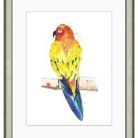 Watercolor Parrot Print I, Paintings