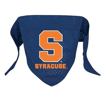 Syracuse Orange Pet Mesh Bandana