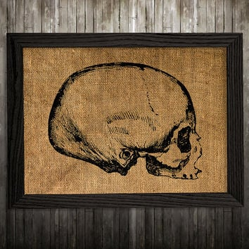 Skeleton decor Anatomy poster Medical print Skull print BLP876