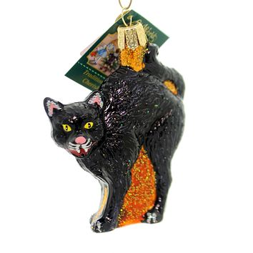 Old World Christmas Scaredy Cat Halloween Glass Ornament
