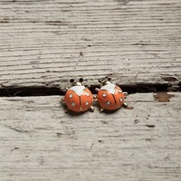 Ladybug Stud Earrings - Coral at Lucky 21 Lucky 21
