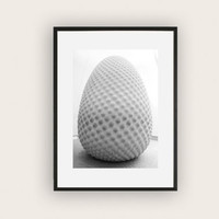 Black and White Photograph of the Seed Sculpture at the Eden Project, Monochromatic Art Photography,  Wall Art, Minimalistic Decor.