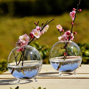 Clear Ball Glass Hanging Vase Bottle Terrarium Hydroponic Container Plant Pot Flower DIY Home Garden Decor