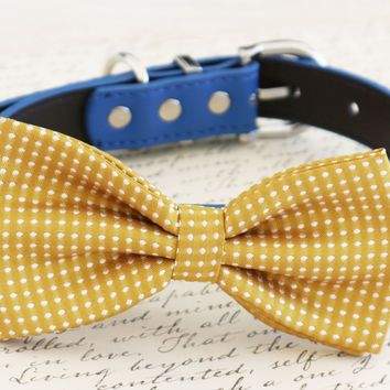 Mustard bow tie attached to dog collar, Mustard wedding pet accessory