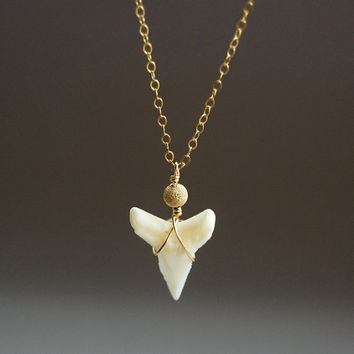 Mano necklace - a real shark tooth on a 14kt gold filled chain, gold shark tooth, delicate hip, modern, everyday necklace, maui, hawaii