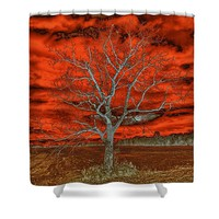 Endings And Beginnings Shower Curtain