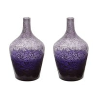 Plum Ombre Bottle - Set of 2 Purple Ombre