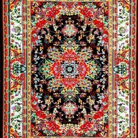 01100 Black Oriental Area Rugs