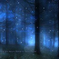 "Nature Photography, Surreal Sparkling Blue Woodlands, Sparkle Stars Moon Lights, Surreal Fine Art Fantasy Photograph 9"" x 12"""