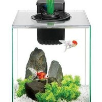 Aqueon Aqua Springs Aquarium Tank Kit 11 gal