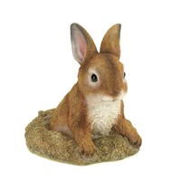 Garden Decor-Peek A Poo Rabbit