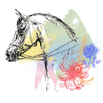 Horse Printable Art Vintage Head Ilration Watercolors Equine Decor Equestrian Decoration Instant