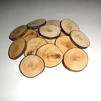 Pine tree rustic wood slices, wood discs with bark, wedding ornaments, Christmas tags, pyrography, fridge magnets, table numbers, wood tags