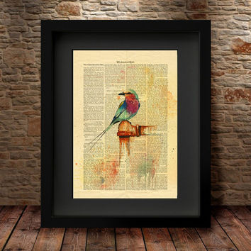 Bird Watercolor Painting, Bird Art Print, Wall Art Poster, Animal Painting, Gift Idea, Bird Painting, Watercolor art, Watercolor PRINT -6