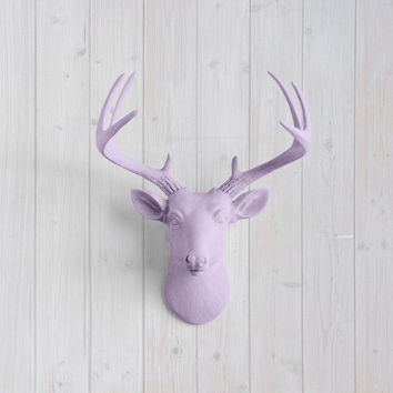 The MINI Virginia Lavender Faux Taxidermy Resin Deer Head Wall Mount | Lavender Stag w/ Colored Antlers