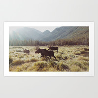 Three Meadow Moose Art Print by Kevin Russ