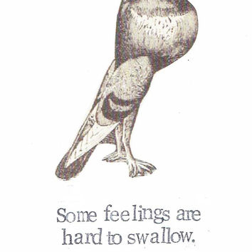 Feelings Are Hard To Swallow Card | Funny Get Well Soon Card For Him For Her Thinking Of You Pigeon Bird Humor