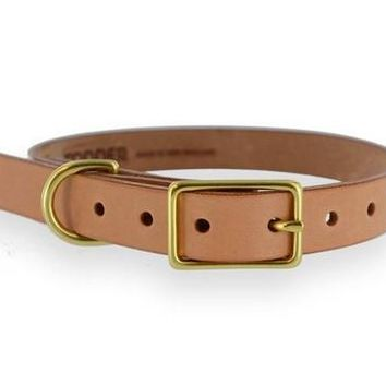 SIMPLE DOG COLLAR