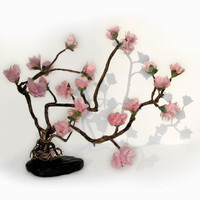 Love Enchanted Sakura Gnarl Bonsai Prunus serrulata by tanjasova