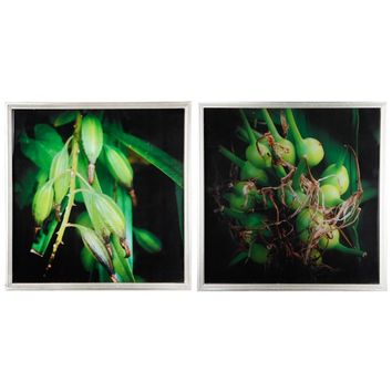 Botanical Photography Cotton Canvas Wall Art , Green, Set of 2, By A and B Home