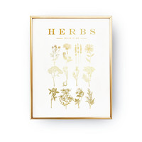 Herbs Poster, Real Gold Foil Print, Kitchen Wall Art, Kitchen Print, Kitchen Decor, Botanical Print, Kitchen Illustration, Provence Print,