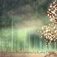 Nature Photography Dreamy Nature Surreal Trees by KathyFornal