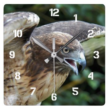 Red-tailed Hawk Photo Square Wall Clock