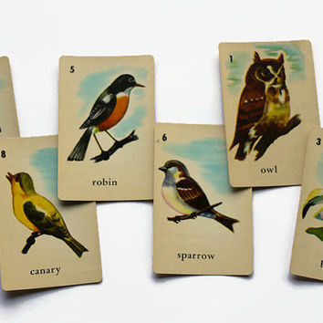Cards Birds Vintage Lot of 6 Owl Stork Pelican Robin Canary Sparrow Children's Game Illustrations for Altered Art Collage Decoupage