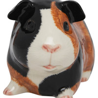 Guinea Pig Multi Money Box, Quail