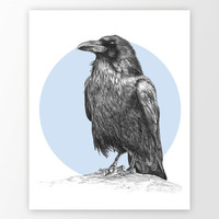 Raven Wall Art Print - Custom Color Raven Bird Pencil Drawing Print - Nursery Animal Wall Decor - Crow Bird Pencil Sketch - Birds Poster #1