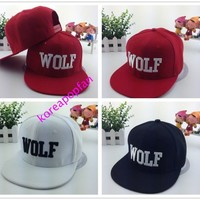 WOLF EXO first year embroidered snapback Cap Hat