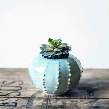 Handmade ceramic petit succulent planter- flower pot- planter for spring flowers- air planter