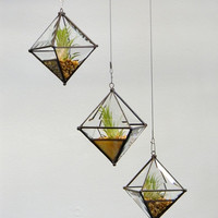 Pyramid Orb Air Plant Planter with Bevel Accent.