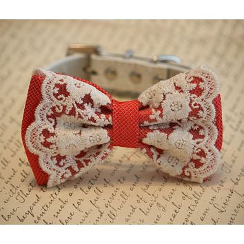 Coral wedding dog collar, Coral Dog Bow Tie, beach wedding