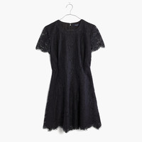 Floral Lace Dress : shopmadewell going out & party dresses   Madewell