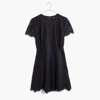 Floral Lace Dress : shopmadewell going out & party dresses | Madewell