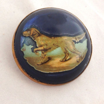 Vintage Hunting Dog Dome Glass Bridle Rosette Pin Brooch - Dark Blue - Gold Golden Retriever - Collectible Brass - Die Cut - bubble  - Horse