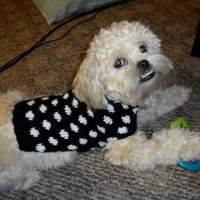 Custom Dog Sweater - Hand Knit, polka dot