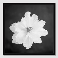 Minted for west elm – Peony