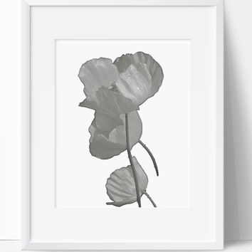 Wall Print, Flower Art, Home Decor, Digital Print, Wall Art, Printable, 8x10, Instant Download, Flower Print, Nature, Black and White Art
