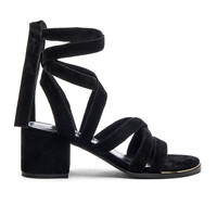 SENSO May Heel in Ebony