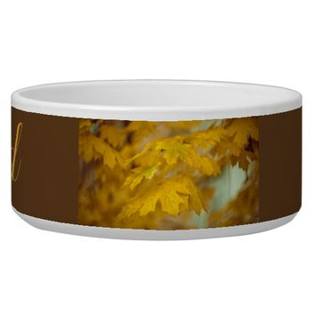 Yellow autumn maple leaves. Add you text and photo Bowl