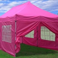 10'x20' Pop up 6 Wall Canopy Party Tent Gazebo Pink - F Model Upgraded Model By DELTA Canopies