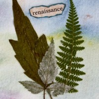 renaissance - Mixed-media Nature Art
