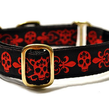Danger Dog Jacquard Martingale Collar - 1 Inch