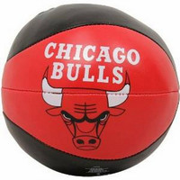 NBA Chicago Bulls 4 Free Throw Softee Basketball